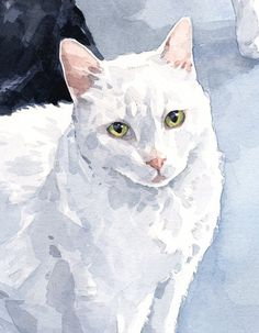 8x10 Custom Cat Portrait Original watercolor painting of your cat  Painted from your photo Heavy weight, archival watercolor paper. Please allow