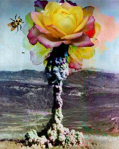 Atomic Wanderlusting Flower Bomb