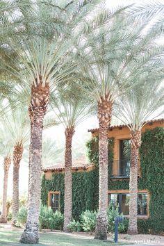 Encanterra Country Club Wedding Photos | Scottsdale and Phoenix Wedding Photographer | April Maura Photography | www.aprilmaura.com_0106.jpg