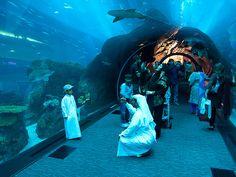 Dubai Mall Aquarium tunnel