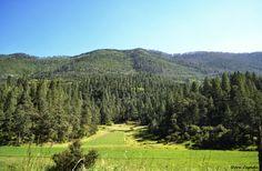 Landscape located in Monterreal, San Antonio de las Alazanas, Arteaga,Coahuila, Mexico