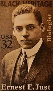 Ernest Everett Just (8/14/1883 – 10/27/41) was a pioneering negro biologist, academic and science writer. Just's primary legacy is his recognition of the fundamental role of the cell surface in the development of organisms. In his work within marine biology, cytology and parthenogenesis, he advocated the study of whole cells under normal conditions, rather than simply breaking them apart in a laboratory setting.  Just was born in South Carolina to Charles Frazier Just Jr. and Mary Matthews…