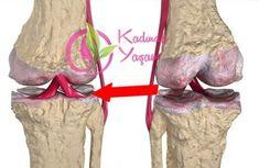 Doktoraları şoka sokan kemikleri ve eklemleri 1 hafta içinde yenileyen, ağrıları kesen karışım!