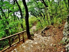 Parque Ecologico Chipinque