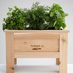 Go beyond organic and embrace self-reliance. At least in small measure. Growing your own garden is a breeze with our growing box from Farmer D Organics. Housed in a 100% cedar box, this kit lets you grow nutritious, delicious food the whole family will love. And because it's small, it's perfect for the patio, deck or balcony.