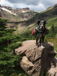 Goat Lake-Jordan Basin — Washington Trails Association