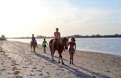Horseback riding on the beach in Bradenton, Florida
