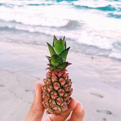 """baby pineapple is so cute😍🍍"" Summer Of Love, Summer Fun, Baby Pineapple, Pineapple Ideas, Pineapple Art, Plum Pretty Sugar, Summer Vibes, Cookies Et Biscuits, Minis"