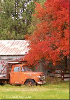 Amazing fall photoshoot of fall color and old truck by The Vintage Bag Lady