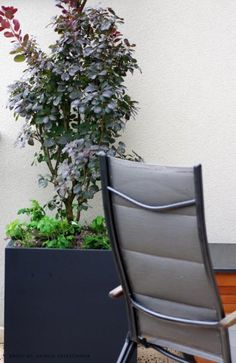 TERASA OLOMOUC 08/2014   Výroba-květináče.cz Outdoor Chairs, Outdoor Furniture, Outdoor Decor, Home Decor, Decoration Home, Room Decor, Garden Chairs, Home Interior Design, Backyard Furniture