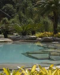 Resultado de imagem para luiz carlos orsini piscina