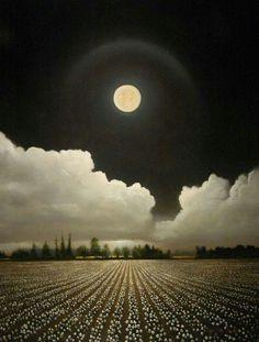 Lunar halo ... ☆