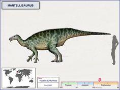 Mantellisaurus by cisiopurple