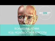 Волшебные точки: Код молодости и красоты   Econet.ru - YouTube