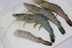 Beignets aux Crevettes - La cuisine de Bernard Shrimp, Food, Voici, Moment, Biscuit, Buffet, Passion, Cooking, Design
