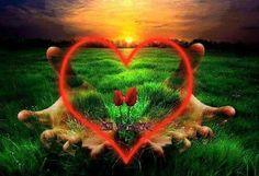 Healing heart that blossoms