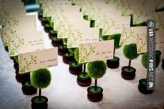 Neato! - Topiary Photo Holder/Place Card Holder (Set of Four) | CHECK OUT MORE GREAT REHEARSAL DINNER PICS AND IDEAS AT WEDDINGPINS.NET | #weddings #wedding #rehearsal #rehearsaldinner #bachelorparty #events #forweddings