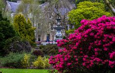Hawick Museum and Park Norway, Scotland, Ireland, Museum, Explore, Mansions, Landscape, Park, House Styles