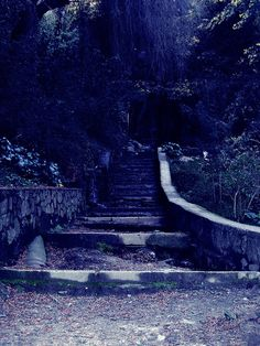 Follow the sound of fairy wings as you climb up the stairs behind her into a world you've only seen in your dreams.