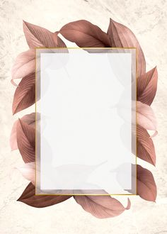 Golden frame on a brown leafy background illustration | free image by rawpixel.com / Kappy Kappy