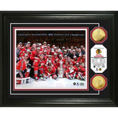 "Chicago Blackhawks 2015 Stanley Cup Champions ""Celebration"" Gold Coin Photo Mint - $99.99"