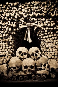 Catacombs of Paris, France. The ossuaries hold the remains of about six million people, making it 'the world's largest grave. It's an incredible experience.