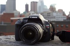 Cannon Rebel t2i - I want this camera so badly!