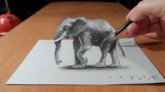 Trick art on paper. Magic realism. How to draw 3D elephant. Anamorphic Illusion. How to draw a realistic elephant. Visual illusion. 3D art. Draw Elephant. Dr...