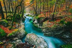 Amazing emerald and blue colored water of teh Mostnice creek in Triglav national park, Slovenia.