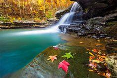 Beautiful Fall Colors in the Ozarks by +James Brandon James Brandon originally shared: Kings River Falls, Arkansas BransonVacationRentalCabins.com #fallcolors #ozarks