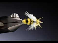 Tying a CdC wasp with Barry Ord Clarke