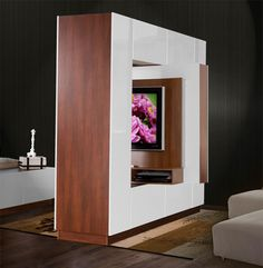 Great for a studio apartment. This customizable room divider allows you to mount your flat screen television in the center and rotate it for viewing on either side of the divider.  All the other surfaces of the divider are storage... a lot of storage.