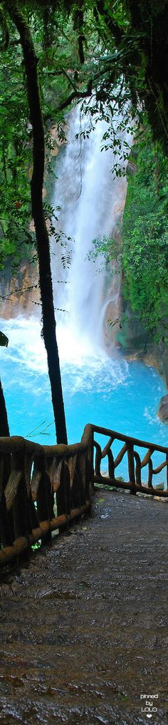 Der Río Celeste in Costa Rica ist eine Reise wert. Auf Grund chemischer Reaktion trägt der Fluss eine speziell blaue Farbe.  http://tropenwanderer.com #CostaRica #PuraVida #RioCeleste #Vulkan #Reisen #Tropenwanderer