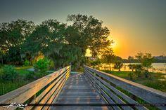 Boardwalk at Hillmore Lake Park Port St. Lucie Florida