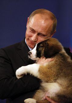 #dog #Putin
