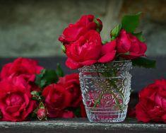 Roses, Red Roses, Bouquet Of Roses, Glass, Rose Bloom Orange Rosen, Rose Orange, Rose Perfume, Organic Roses, Rose Essential Oil, Rose Bouquet, Vases Decor, Rose Buds, Beautiful Roses