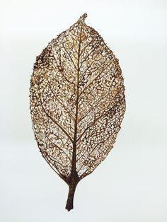 Skeleton Leaf  http://www.charlenecollinsfreeman.com/shopcharlenecollinsfreeman/skeleton-leaf  Charlene Freeman