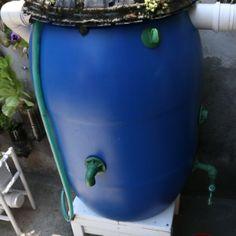 Por R$ 150, coletor de água de chuva ajuda a reduzir conta pela metade