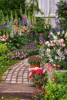garden - cottage garden full of perennial flowers plant & flower Stock Photography: Ga . - Garden – cottage garden full of perennial flowers plant & flower Stock Photography: Gar … - Cottage Garden Design, Flower Garden Design, Backyard Cottage, English Garden Design, Cottage Front Garden, Small Cottage Garden Ideas, Cottage Garden Plants, French Garden Ideas, Country Garden Ideas