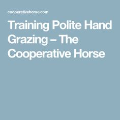 Training Polite Hand Grazing – The Cooperative Horse