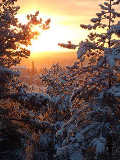 From window, Ounasrinne, Rovaniemi
