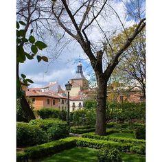 Ese jardín escondido en pleno centro. #madrid #garden #urbangarden @mmarchant_ec