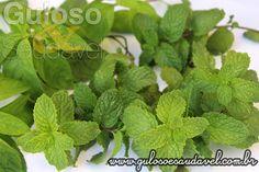 Você conhece os benefícios desta planta super poderosa? Razões para Consumir Hortelã!  Artigo aqui: http://www.gulosoesaudavel.com.br/2015/10/16/razoes-para-consumir-hortela/
