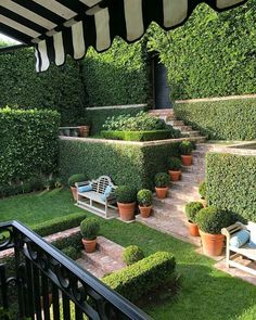 52 Adorable Diy Backyard Design Ideas That You Can Make In Your Home - Want to turn that backyard space into a beautiful haven? Perhaps it is high time for you to go over some backyard landscape ideas. The best suited lan. Back Gardens, Small Gardens, Outdoor Gardens, Front Yard Landscaping, Landscaping Ideas, Boxwood Landscaping, Florida Landscaping, Backyard Privacy, Outdoor Landscaping