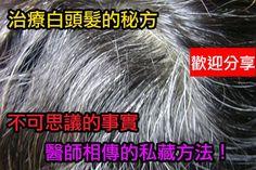 養髮食療方頭髮早脫落或變白的原因很多,其主要是營養和精神兩大因素。中醫認為,憂傷鬱悶,會致肝腎心脾俱傷,使頭髮失其營養,這樣頭髮變白或脫落就在所難免。中醫學認為,下列因素與白髮有關:一是精虛血弱:腎精不足,不能化生陰血,陰血虧虛,導致毛髮失其濡養,故而花白。二是血熱偏盛:情緒激動,致使水不涵木,肝旺血燥,血熱偏盛,毛根失養,故發早白。三是肝鬱脾濕:肝氣鬱滯、損及心脾,脾傷運化失職,氣血生