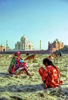 pakizah: Goatherds and Taj Mahal. (by Carl Welsby) Taj Mahal India, Rajasthan India, State Of Decay, Mother India, India Colors, Vibrant Colors, Amazing India, Bollywood, Visit India