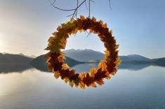 Martin Hill, Autumn Leaf Circle, 2008