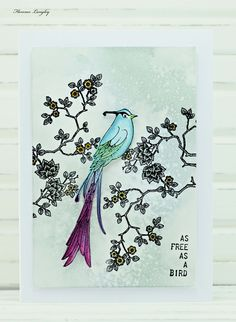 Card Making using Chocolate Baroque rubber stamps A Little Bird Told Me and As Free As A bird Sets.