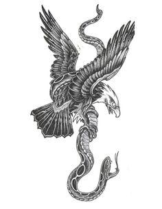 eagle snake - Szukaj w Google