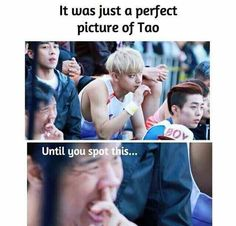XD What in the world?! What a great way to ruin a perfect good picture XD   { #Tao #HuangZitao #ZTao #EdisonHuang #Hailang #CPop #ChinesePop #Chinese #CPopFunny #CPopMeme } ©KpopAmino